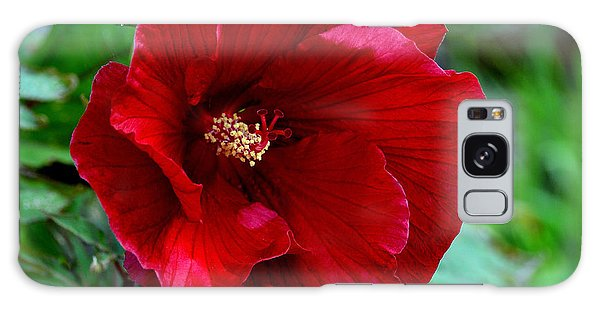 Giant Red Hibiscus Galaxy Case by Kathleen Stephens