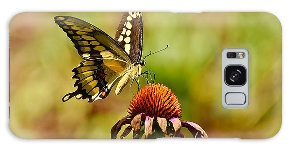 Giant Swallowtail Butterfly Galaxy Case by Kathy Baccari
