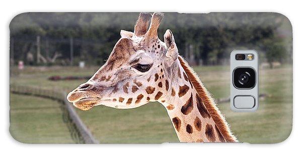 Giraffe 02 Galaxy Case