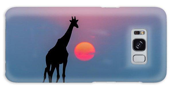Giraffe At Sunset Chobe Np Botswana Galaxy S8 Case