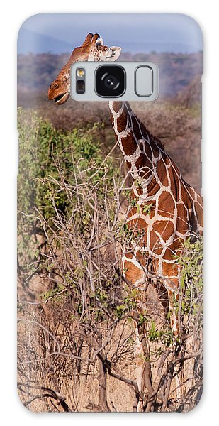 Giraffe Galaxy Case