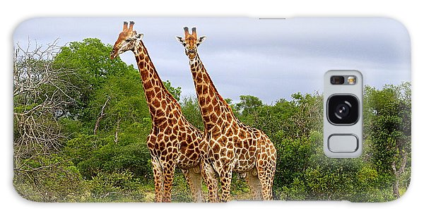 Giraffe Males Before The Storm Galaxy Case