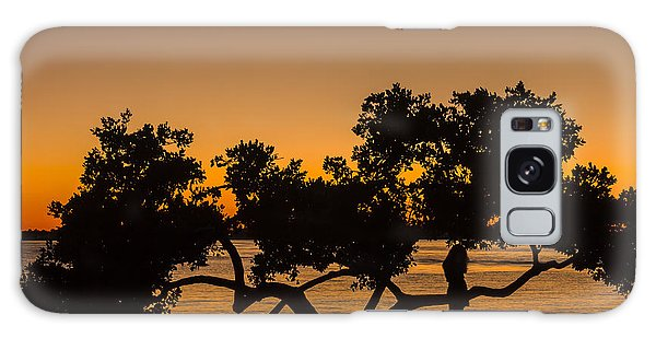 Mangrove Galaxy Case - Girl And Tree by Marvin Spates