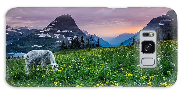 Goat Galaxy Case - Glacier National Park 4 by Larry Marshall