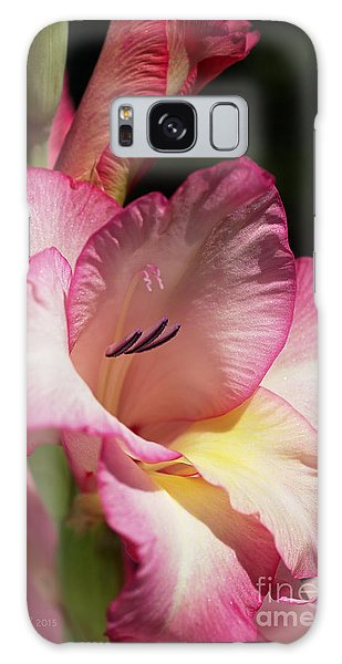 Gladiolus In Pink Galaxy Case