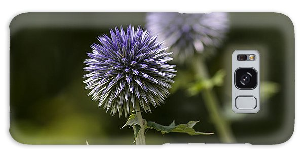 Globe Thistle Galaxy Case by Dan Hefle