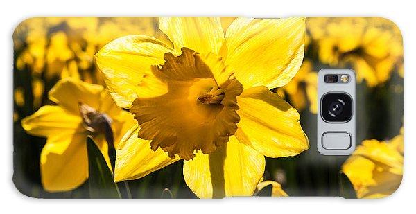 Glowing Daffodil Galaxy Case