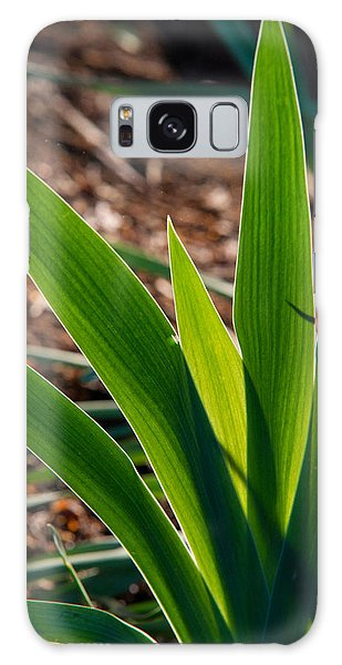 Crossville Galaxy Case - Glowing Iris Leaves 1 by Douglas Barnett