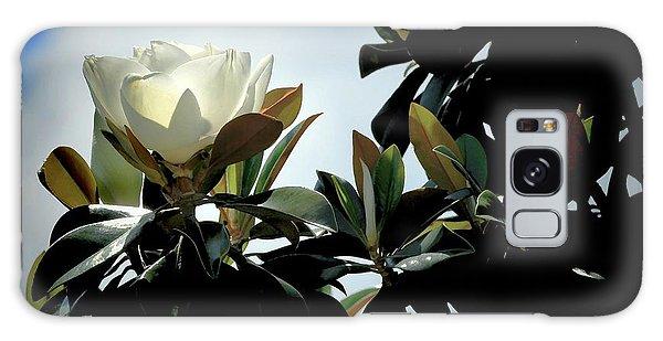 Glowing Magnolia Galaxy Case by Pamela Blizzard