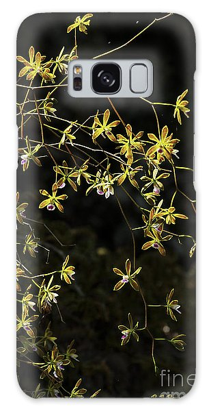 Glowing Orchids Galaxy Case