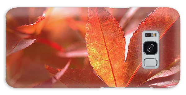 Glowing Red Leaves Galaxy Case