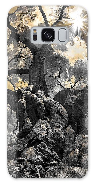 Gnarled Maple Galaxy Case by Steve Zimic