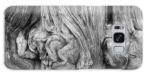 Gnarled Tree Galaxy Case by Alexandra Jordankova