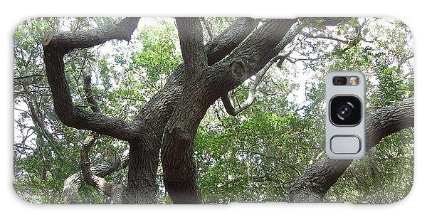 Gnarled Tree Galaxy Case by Cathy Lindsey