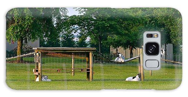 Goat Playground Galaxy Case