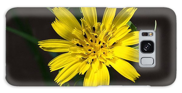 Goats Beard Flower Galaxy Case
