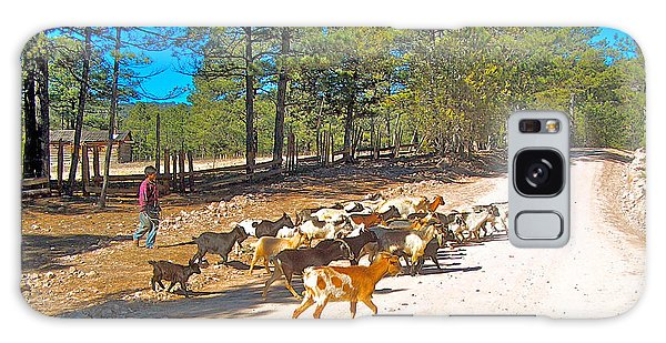 Goats Cross The Road With Tarahumara Boy As Goatherd-chihuahua Galaxy Case