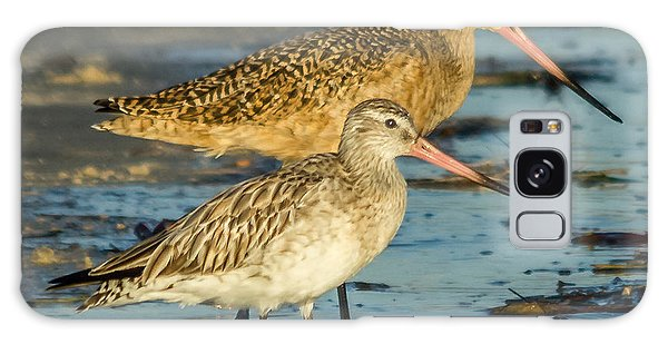 Godwits Galaxy Case by Jane Luxton