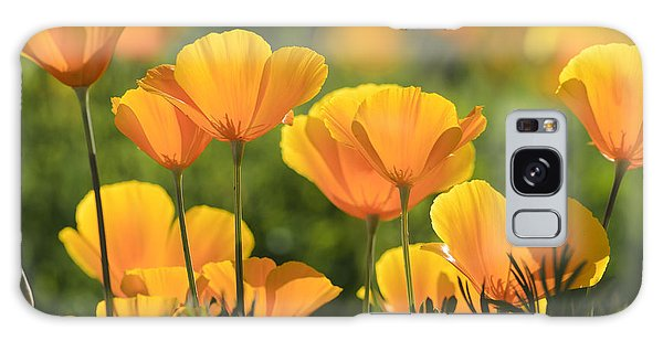 Gold Poppies Galaxy Case