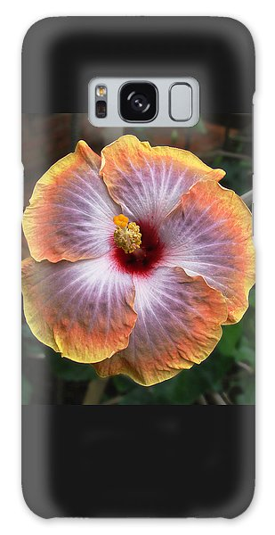 Gold Rim Hibiscus Galaxy Case