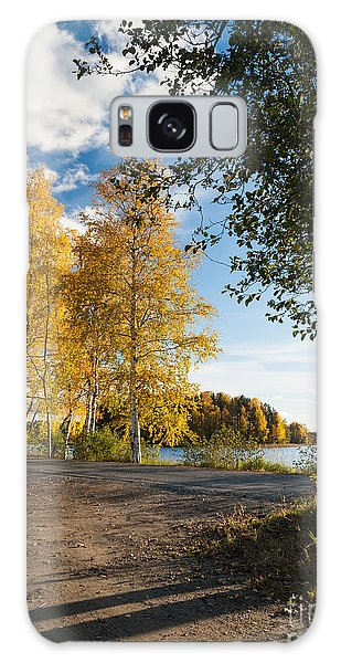 Golden Autumn Birches Galaxy Case