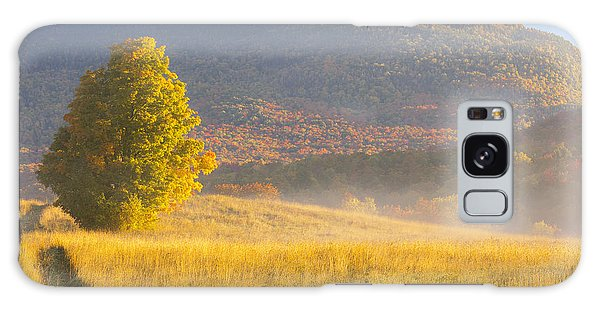 Golden Autumn Morning Galaxy Case