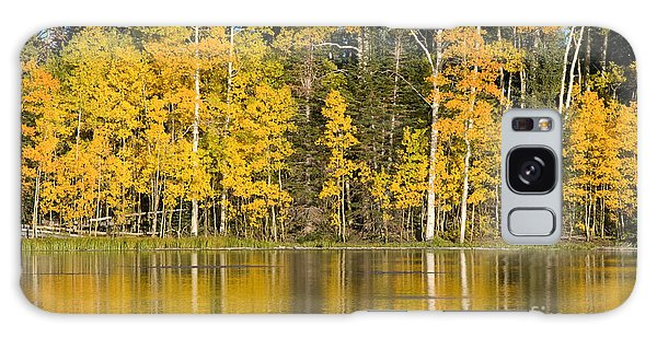 Golden Autumn Pond Galaxy Case
