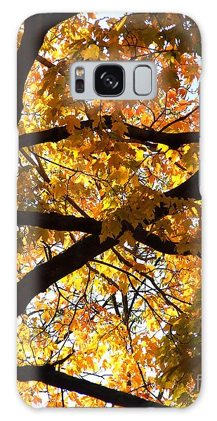 Galaxy Case featuring the photograph Golden Backlit by Kristen Fox