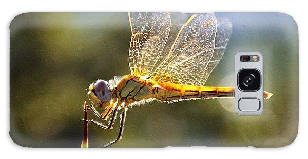 Golden Dragonfly Galaxy Case