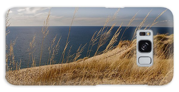 Golden Dune Grass On The Lake Galaxy Case