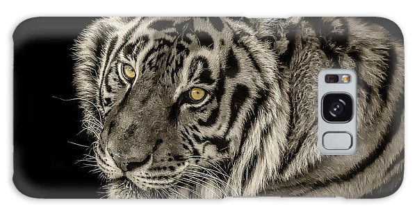 Golden Eyes Of The Tiger Galaxy Case