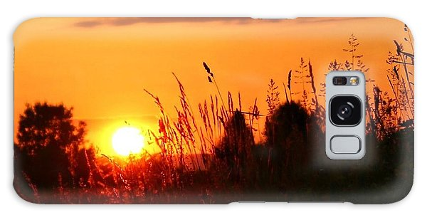 Golden Field Galaxy Case