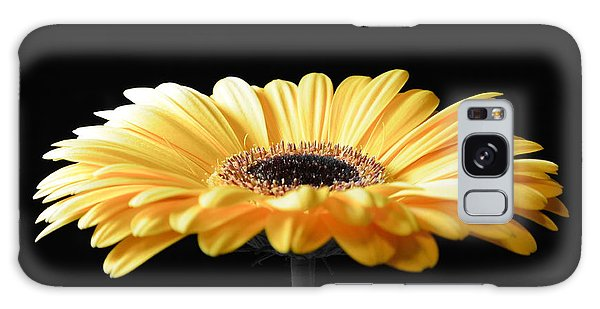 Golden Gerbera Daisy No 2 Galaxy Case