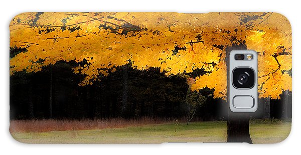 Golden Glow Of Autumn Fall Colors Galaxy Case by Jeff Folger