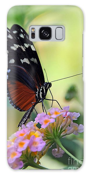 Golden Helicon Butterfly - Say What Galaxy Case