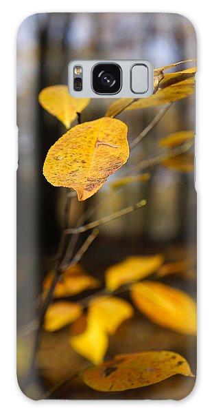 Golden Leaf Galaxy Case