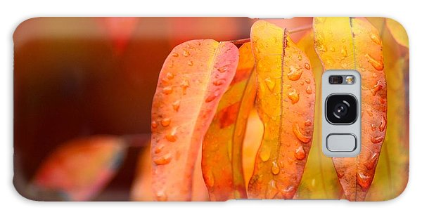Golden Leaves In The Rain At Stanford Galaxy Case