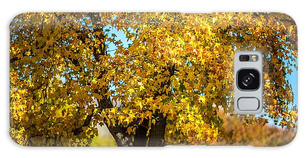 Golden Leaves Of Autumn Galaxy Case by Mike Lee
