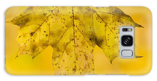 Golden Maple Leaf Galaxy Case by Sebastian Musial