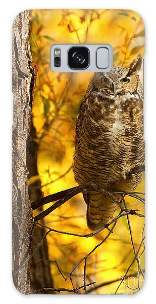 Golden Owl Galaxy Case