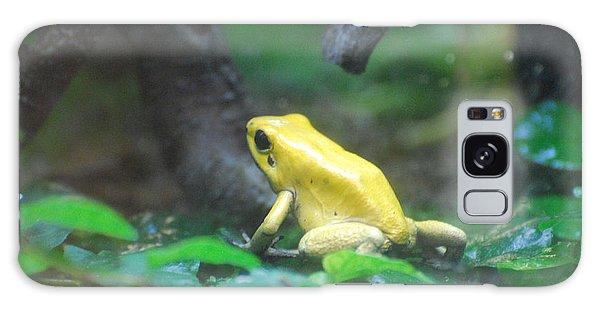 Golden Poison Frog Galaxy Case by DejaVu Designs