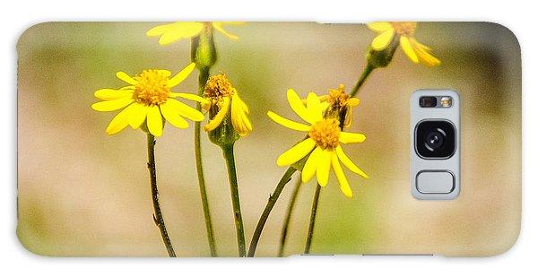 Golden Ragwort Galaxy Case