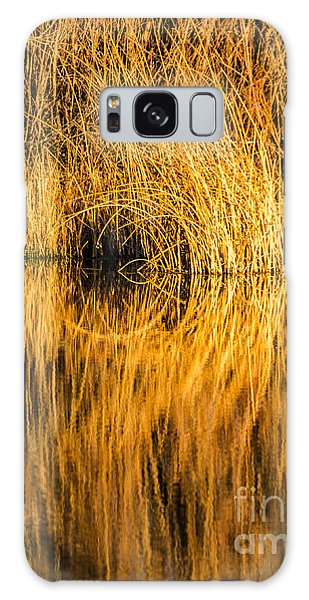 Golden Reflections Galaxy Case