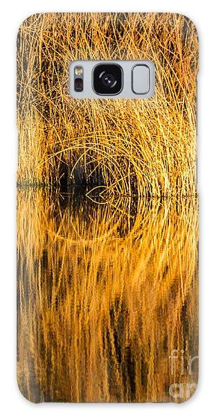 Golden Reflections Galaxy Case