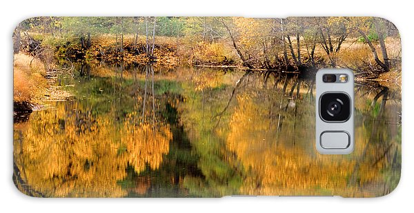 Golden Reflections Galaxy Case by Terry Garvin