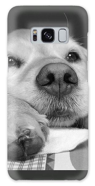 Golden Retriever Dog I See You Galaxy Case
