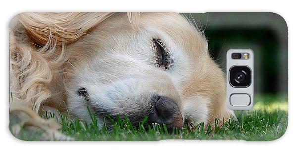 Golden Retriever Dog Sweet Dreams Galaxy Case