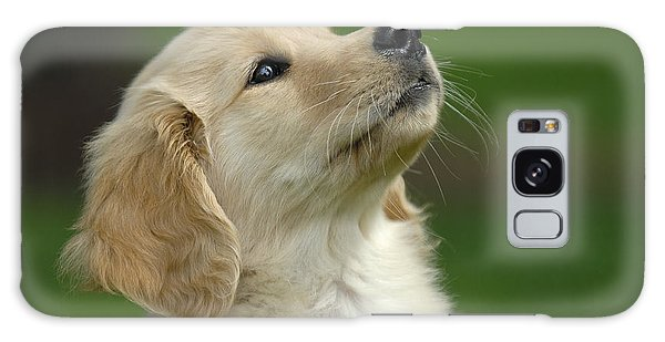 Golden Retriever Puppy Galaxy Case