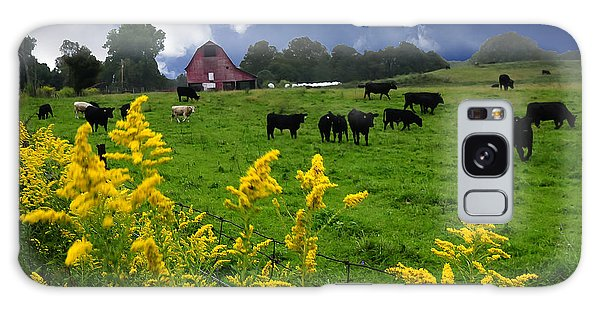 Golden Rod Black Angus Cattle  Galaxy Case by Randall Branham