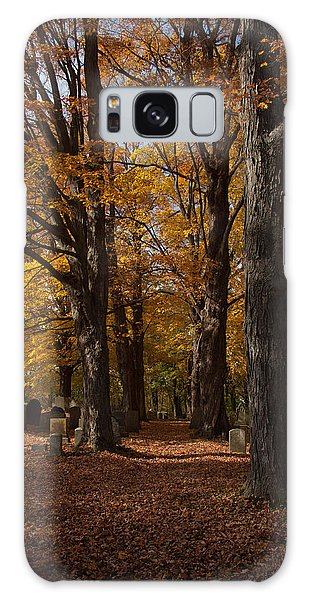Golden Rows Of Maples Guide The Way Galaxy Case by Jeff Folger